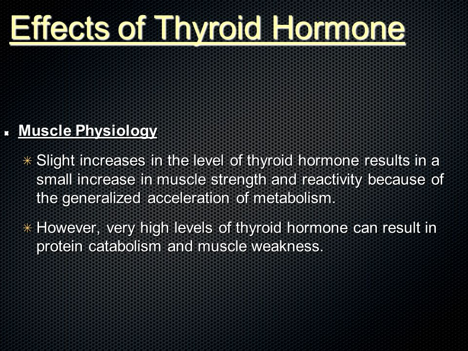 Effects of Thyroid Hormone Muscle Physiology ✴ Slight increases in the level of thyroid hormone results in a small increase in muscle strength and reactivity because of the generalized acceleration of metabolism.
