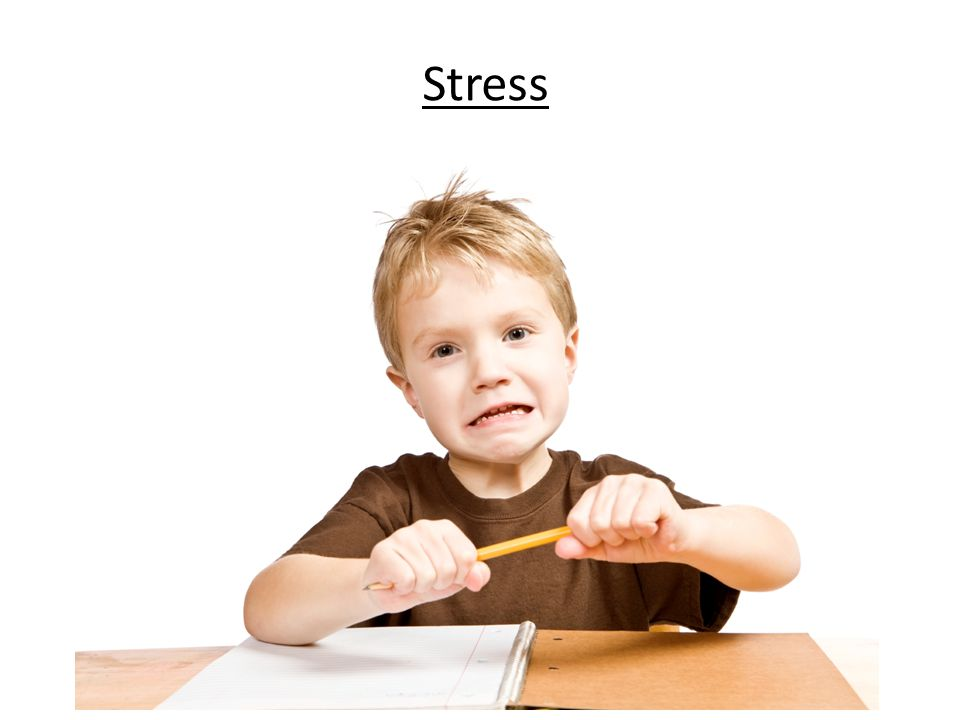 Short-Term Stress Response Fight or flight response is stimulated by epinephrine