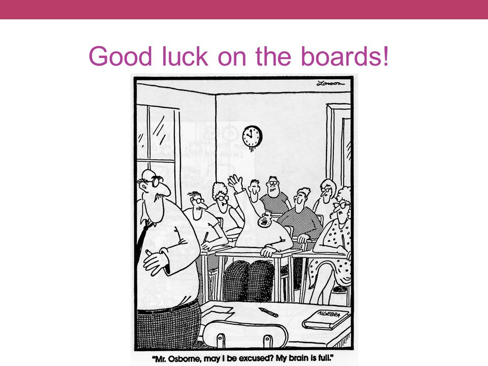 Good luck on the boards!