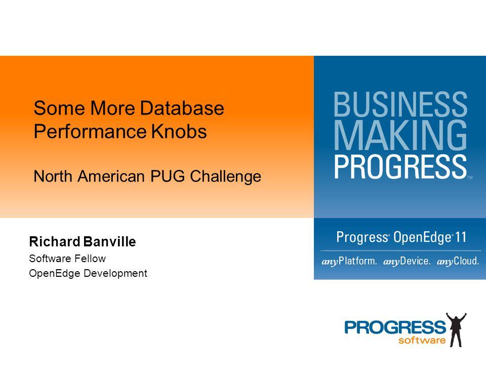 Some More Database Performance Knobs North American PUG Challenge Richard Banville Software Fellow OpenEdge Development
