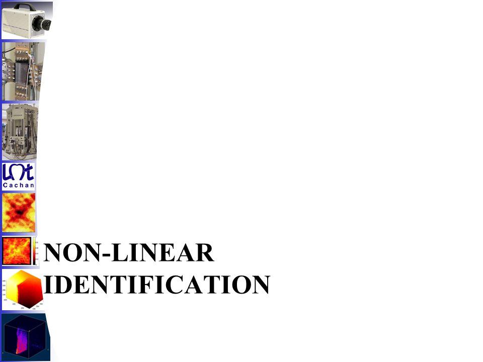 NON-LINEAR IDENTIFICATION
