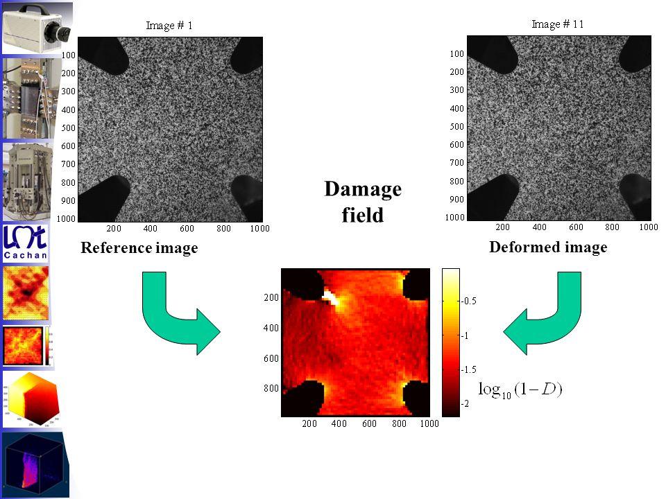 Reference image Deformed image Damage field