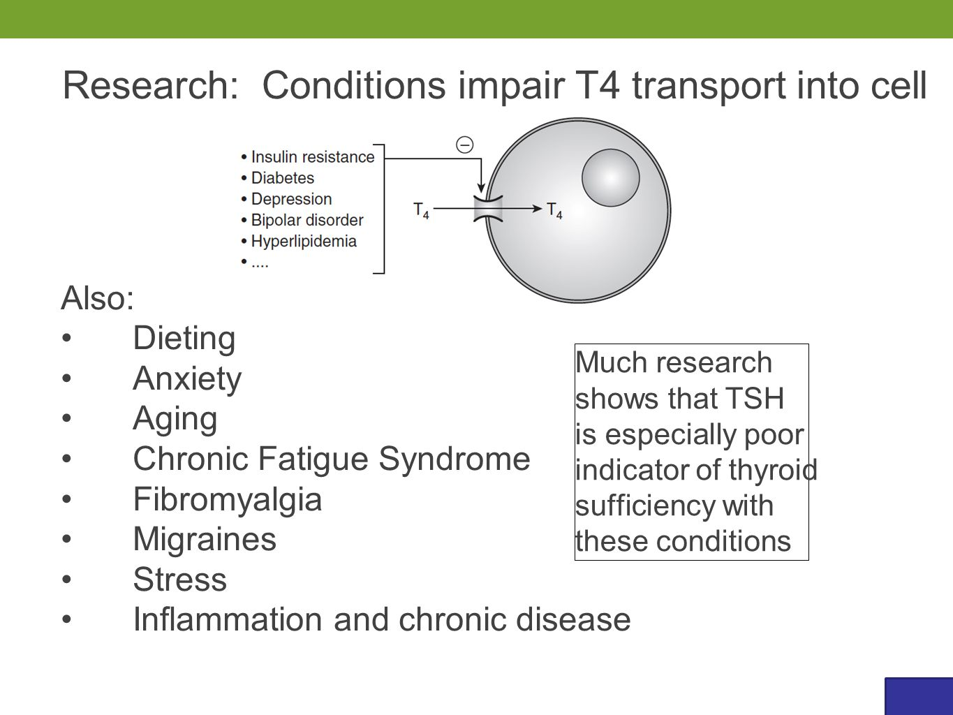 Also: Dieting Anxiety Aging Chronic Fatigue Syndrome Fibromyalgia Migraines Stress Inflammation and chronic disease Research: Conditions impair T4 transport into cell Much research shows that TSH is especially poor indicator of thyroid sufficiency with these conditions