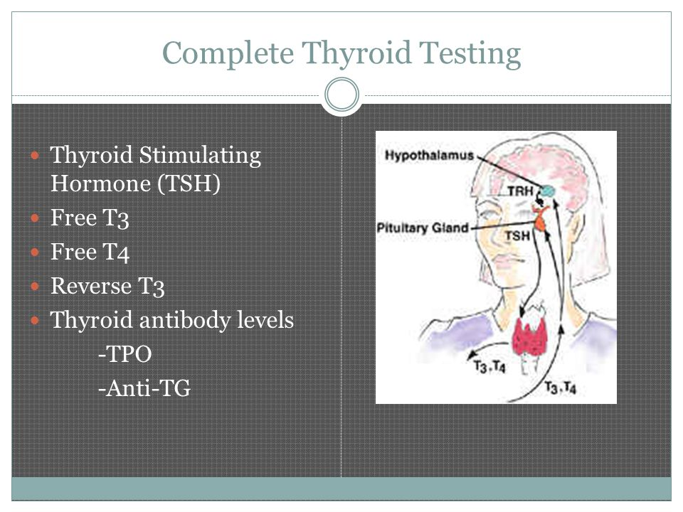 Complete Thyroid Testing Thyroid Stimulating Hormone (TSH) Free T3 Free T4 Reverse T3 Thyroid antibody levels -TPO -Anti-TG