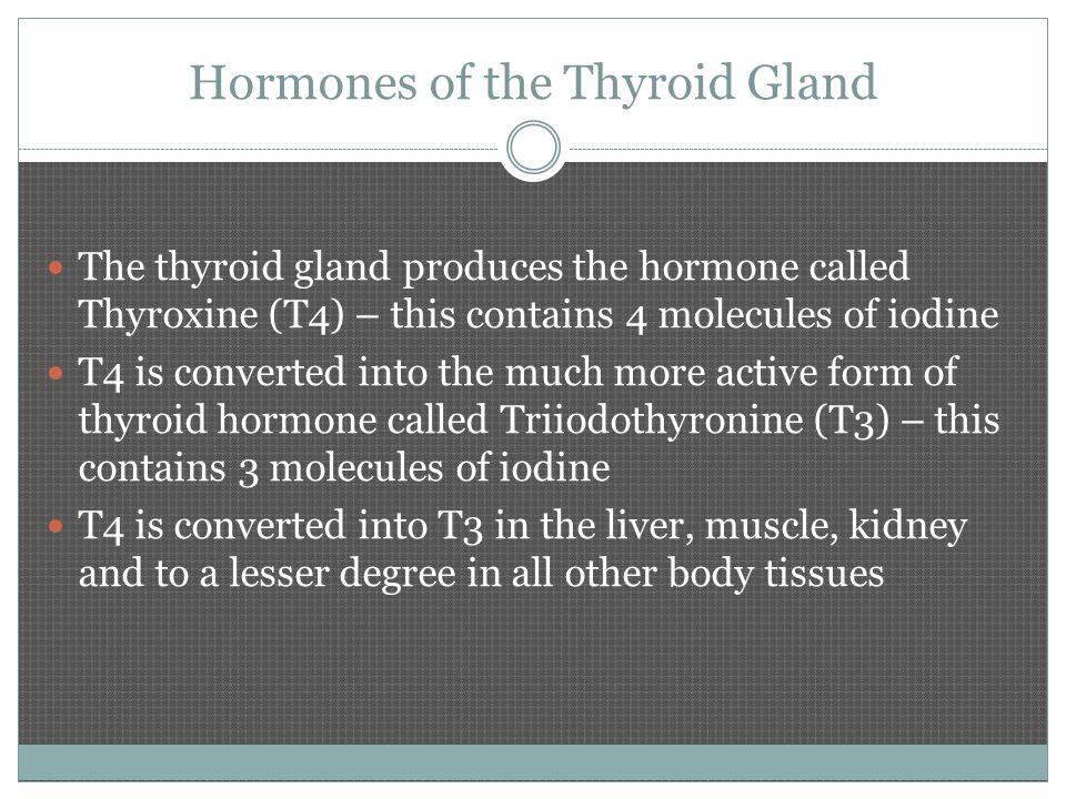 Tyrosine The amino acid tyrosine combines with iodine to make the hormone thyroxine (T4).
