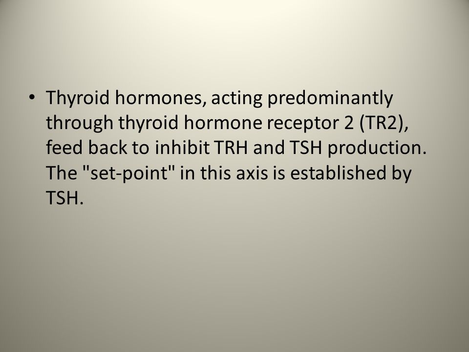 Thyroid hormones, acting predominantly through thyroid hormone receptor 2 (TR2), feed back to inhibit TRH and TSH production.