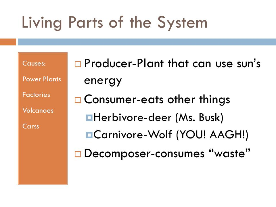 Living Parts of the System Causes: Power Plants Factories Volcanoes Carss  Producer-Plant that can use sun's energy  Consumer-eats other things  Herbivore-deer (Ms.