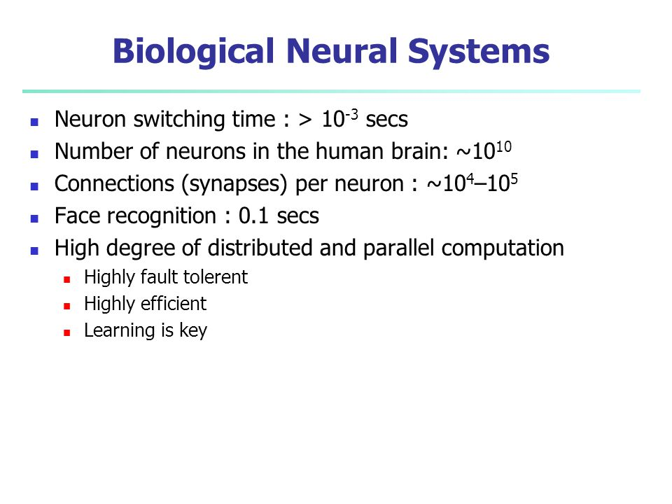 Excerpt from Russell and Norvig http://faculty.washington.edu/chudler/cells.html