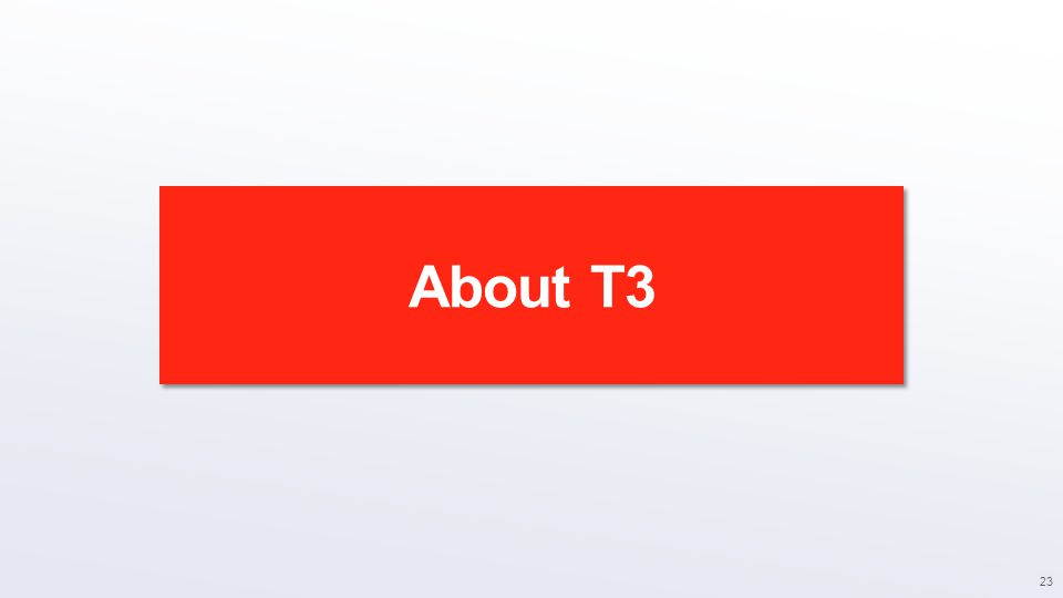About T3 23
