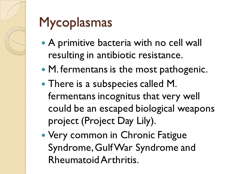 Mycoplasmas A primitive bacteria with no cell wall resulting in antibiotic resistance. M. fermentans is the most pathogenic. There is a subspecies cal