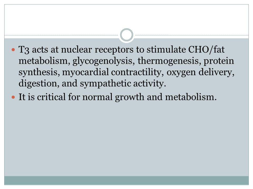 T3 acts at nuclear receptors to stimulate CHO/fat metabolism, glycogenolysis, thermogenesis, ​ protein synthesis, myocardial contractility, oxygen delivery, digestion, and sympathetic ​ activity.