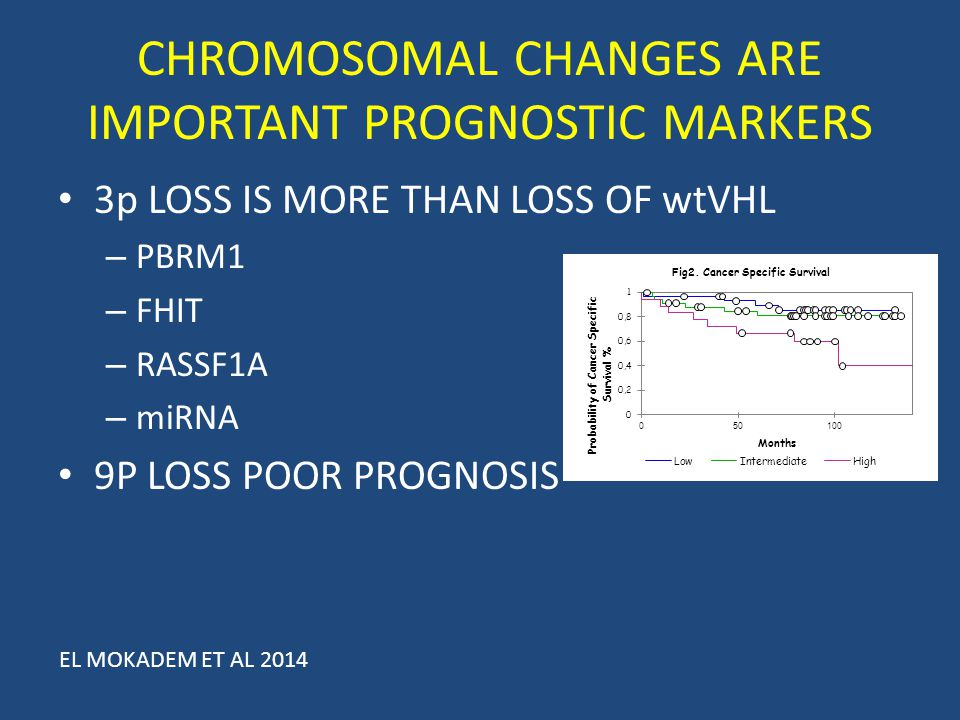 CHROMOSOMAL CHANGES ARE IMPORTANT PROGNOSTIC MARKERS 3p LOSS IS MORE THAN LOSS OF wtVHL – PBRM1 – FHIT – RASSF1A – miRNA 9P LOSS POOR PROGNOSIS EL MOK