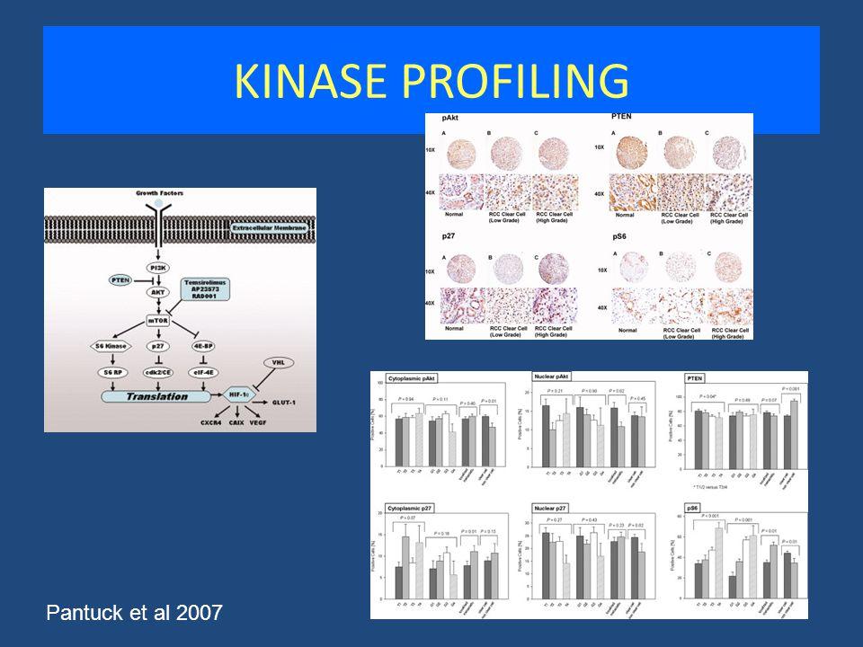 KINASE PROFILING Pantuck et al 2007