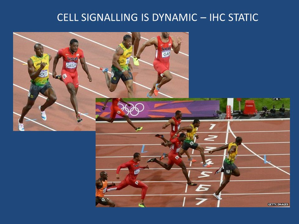 CELL SIGNALLING IS DYNAMIC – IHC STATIC
