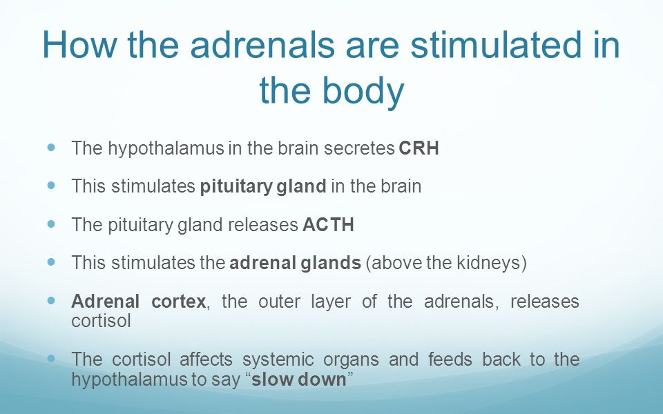 Stressors of the adrenal glands – 1 – Anger/fear/worry/anxiet y/depression/guilt Overwork, physical or mental Sleep deprivation Excessive exercise Light cycle disruption/late hours Surgery/accidents/trau ma/injury Noise Inflammation and pain