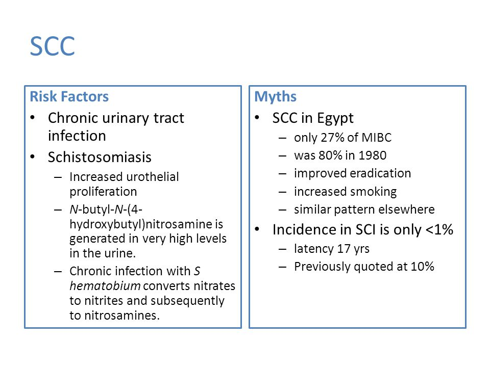 SCC Risk Factors Chronic urinary tract infection Schistosomiasis – Increased urothelial proliferation – N-butyl-N-(4- hydroxybutyl)nitrosamine is generated in very high levels in the urine.