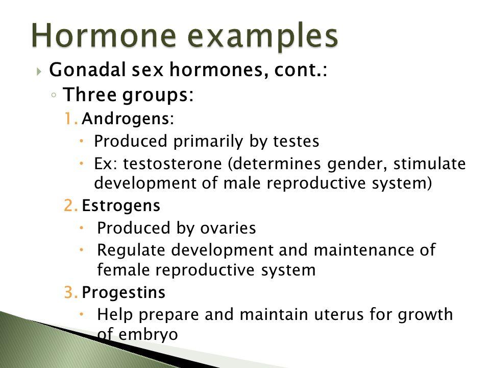  Gonadal sex hormones, cont.: ◦ Three groups: 1.Androgens:  Produced primarily by testes  Ex: testosterone (determines gender, stimulate developmen