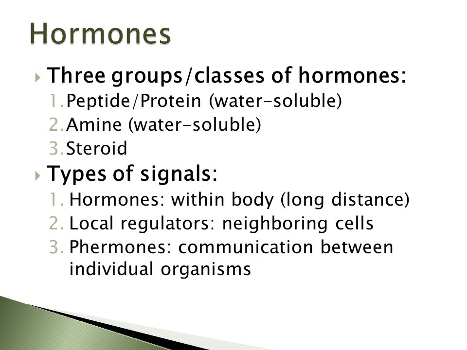  Three groups/classes of hormones: 1.Peptide/Protein (water-soluble) 2.Amine (water-soluble) 3.Steroid  Types of signals: 1.Hormones: within body (l