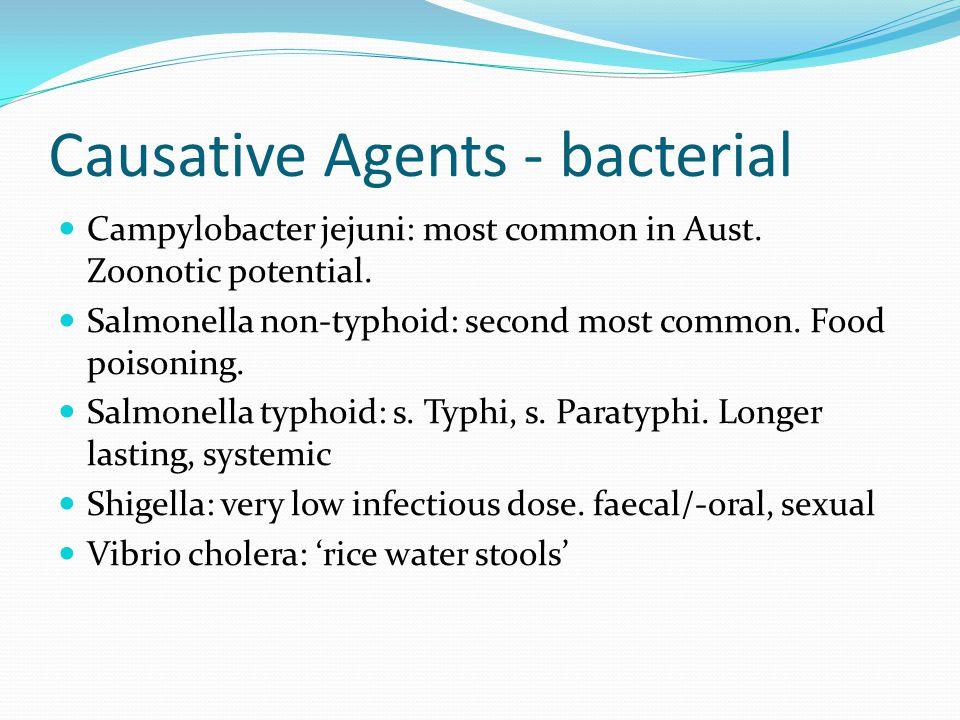 Causative agents - parasites Giardia Lamblia: protozoan.