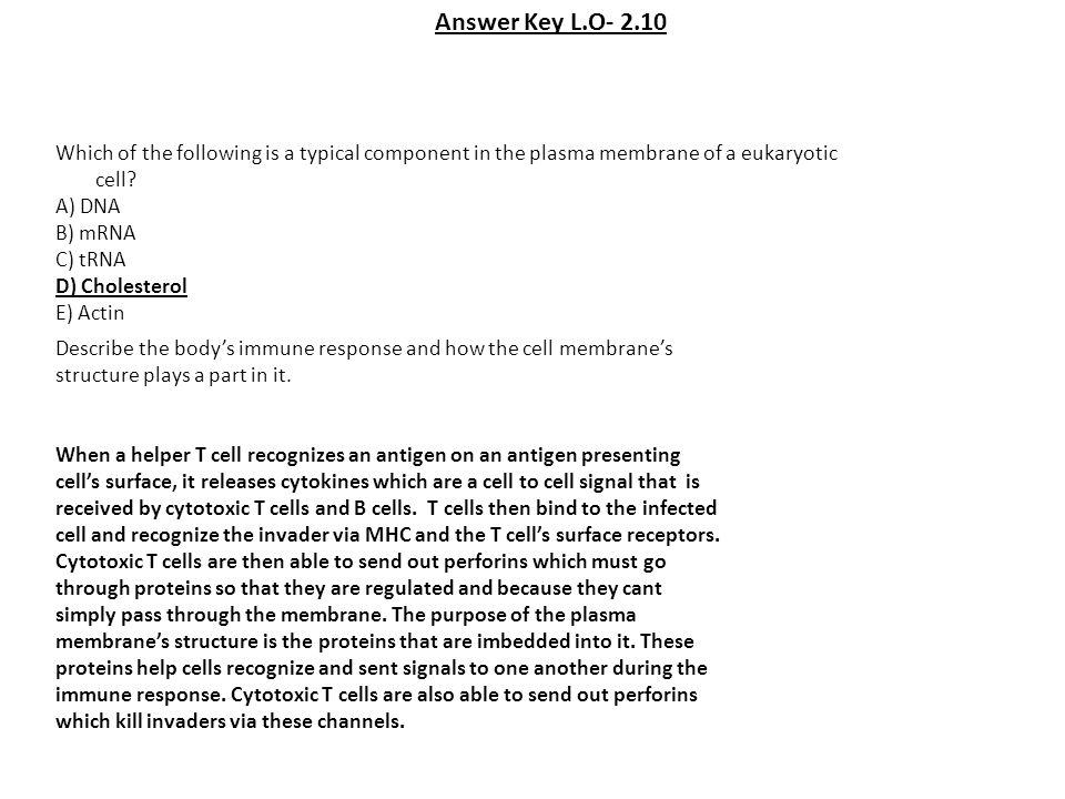 Answer Key- L.O.2.35 M.C.