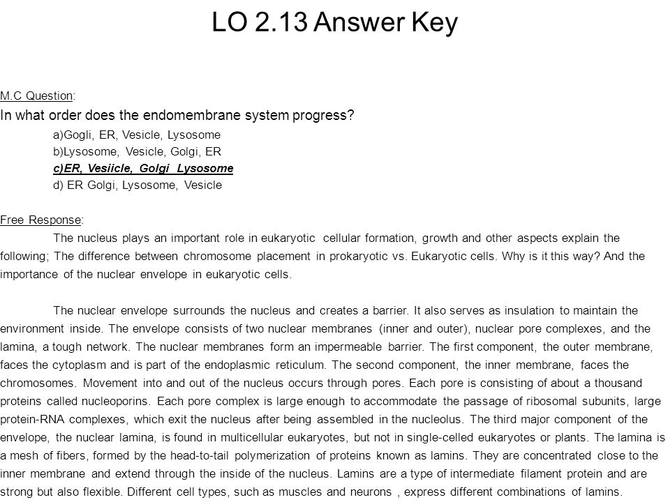 Answer Key- L.O.2.25 M.C.
