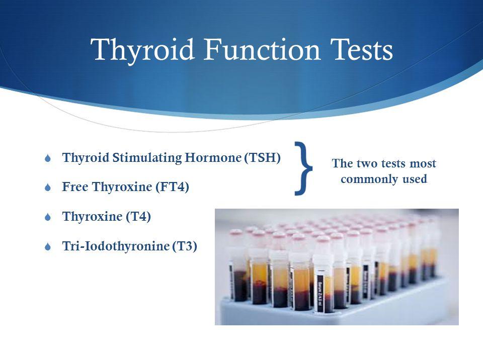 Thyroid Function Tests  Thyroid Stimulating Hormone (TSH)  Free Thyroxine (FT4)  Thyroxine (T4)  Tri-Iodothyronine (T3) The two tests most commonl
