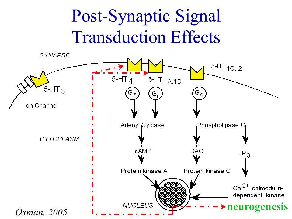 Pre-Synaptic Neurotransmitter Effects Oxman, 2005