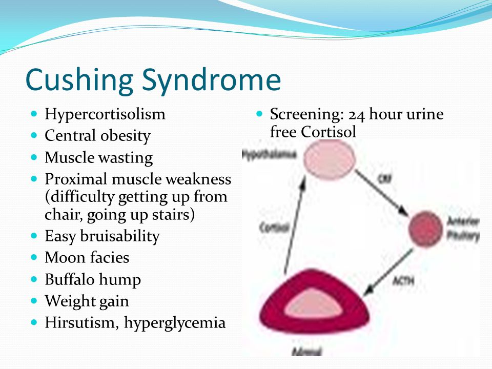 Cushing Syndrome Hypercortisolism Central obesity Muscle wasting Proximal muscle weakness (difficulty getting up from chair, going up stairs) Easy bruisability Moon facies Buffalo hump Weight gain Hirsutism, hyperglycemia Screening: 24 hour urine free Cortisol