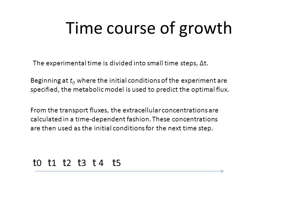 Time course of growth t0t0 t1t1 t2t2 t5t5 t4t4 t3t3 The experimental time is divided into small time steps, Δt. Beginning at t 0 where the initial con