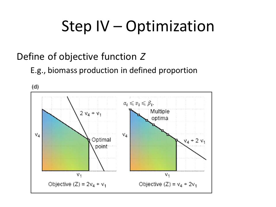 Step IV – Optimization Define of objective function Z E.g., biomass production in defined proportion
