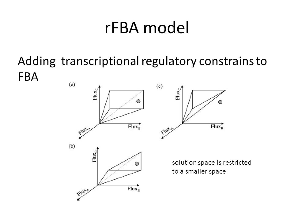 rFBA model Adding transcriptional regulatory constrains to FBA solution space is restricted to a smaller space