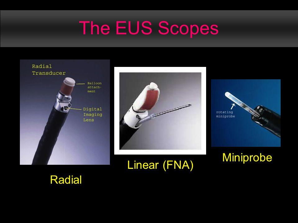 The EUS Scopes Radial Linear (FNA) Miniprobe