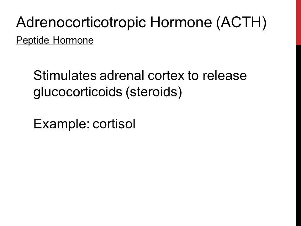 Adrenocorticotropic Hormone (ACTH) Peptide Hormone Stimulates adrenal cortex to release glucocorticoids (steroids) Example: cortisol