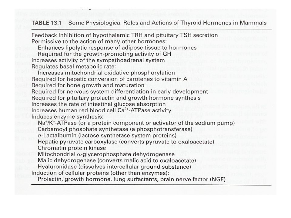 Relationship between diet and thyroid hormone function Increase in energy intake –Total calories –Increased carbohydrate content –Increase in thermogenesis Increased T3 –Increased conversion of T4 to T3 Reduction in carbohydrate intake –Increased conversion of T3 to rT3 Increased metabolism of nutrients Sparing of nutrients from weight gain