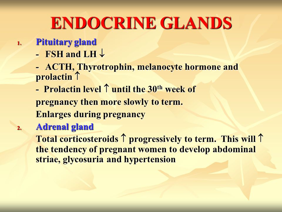 3.Thyroid gland -Enlarges during pregnancy, occasionally to twice its normal size.