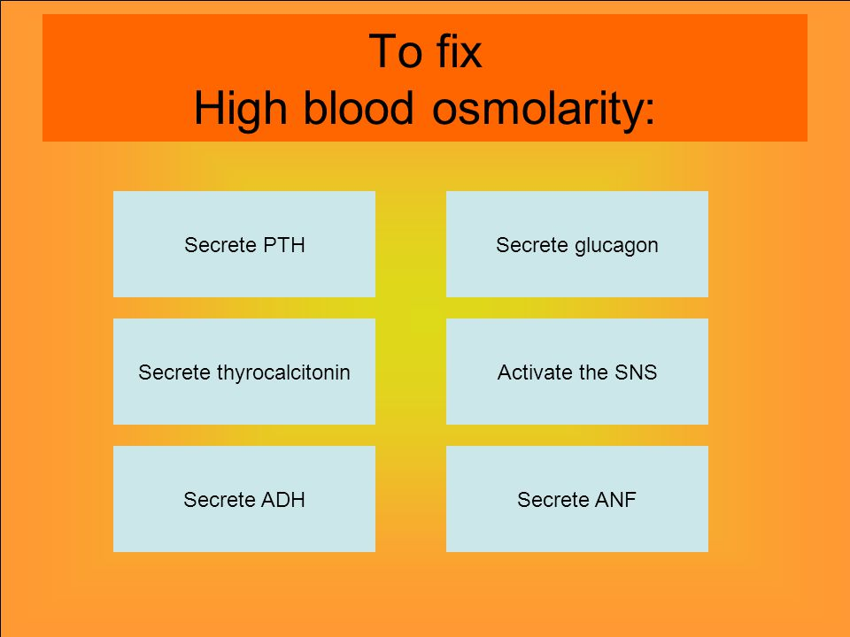 To fix High blood osmolarity: Secrete PTH Secrete thyrocalcitonin Secrete ADHSecrete ANF Activate the SNS Secrete glucagon