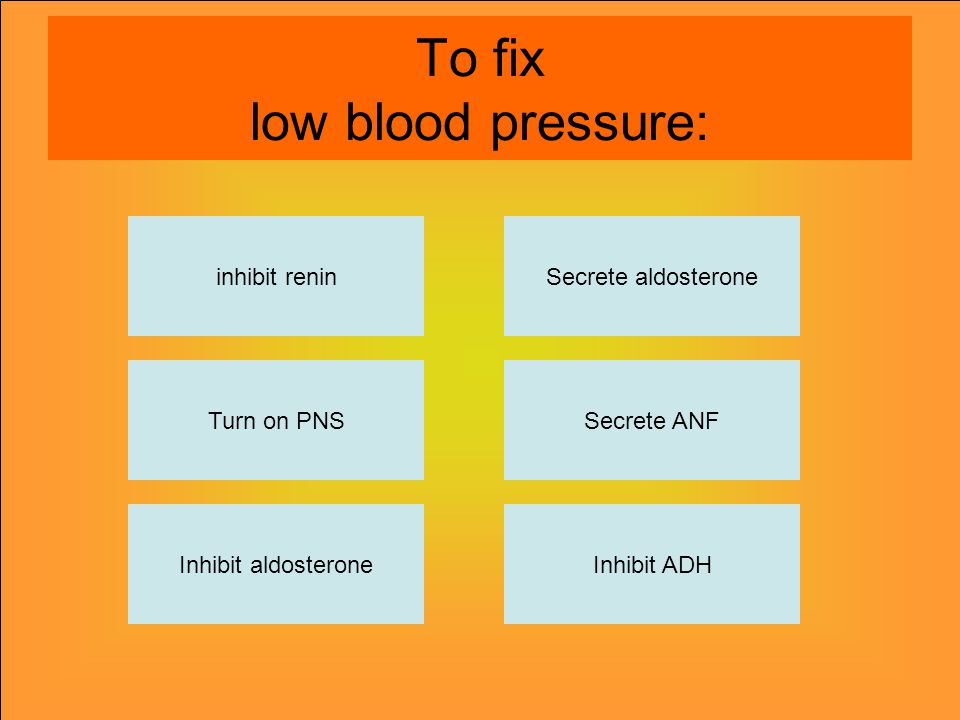 To fix low blood pressure: inhibit renin Inhibit aldosteroneInhibit ADH Secrete ANF Secrete aldosterone Turn on PNS
