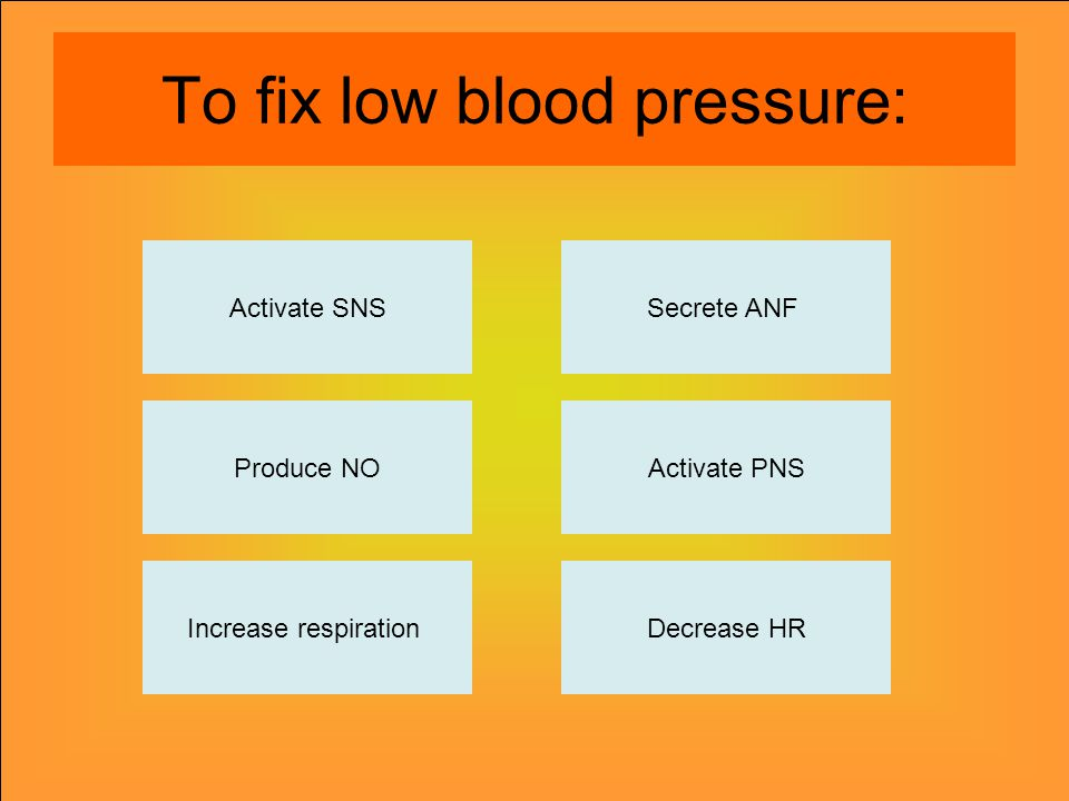 To fix low blood pressure: Activate SNS Produce NO Increase respirationDecrease HR Activate PNS Secrete ANF