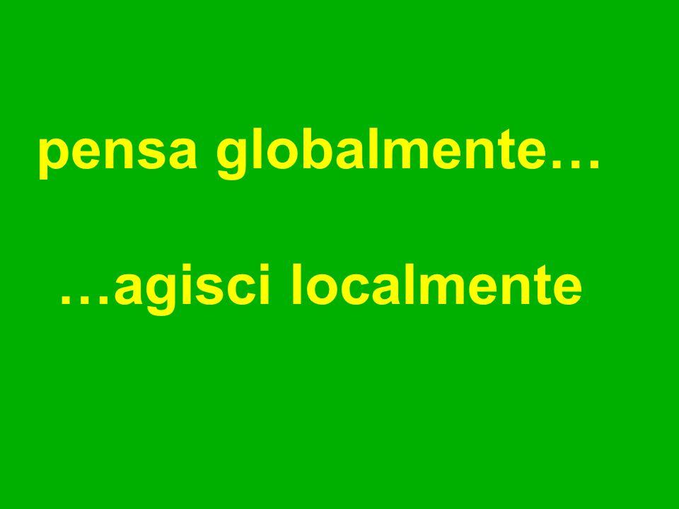 pensa globalmente… …agisci localmente