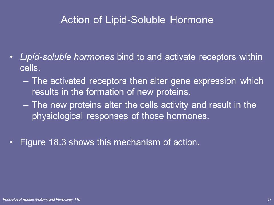 Principles of Human Anatomy and Physiology, 11e17 Action of Lipid-Soluble Hormone Lipid-soluble hormones bind to and activate receptors within cells.
