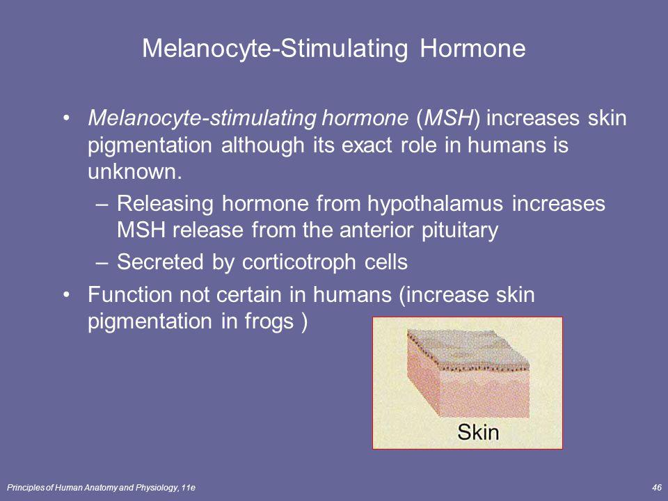 Principles of Human Anatomy and Physiology, 11e46 Melanocyte-Stimulating Hormone Melanocyte-stimulating hormone (MSH) increases skin pigmentation alth