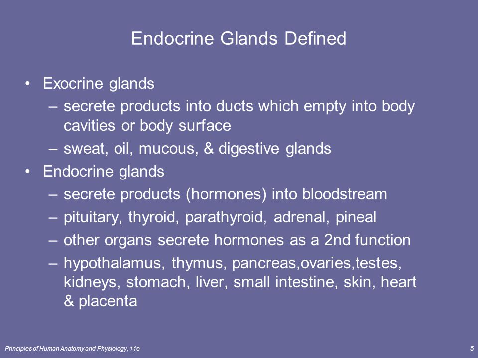 Principles of Human Anatomy and Physiology, 11e5 Endocrine Glands Defined Exocrine glands –secrete products into ducts which empty into body cavities