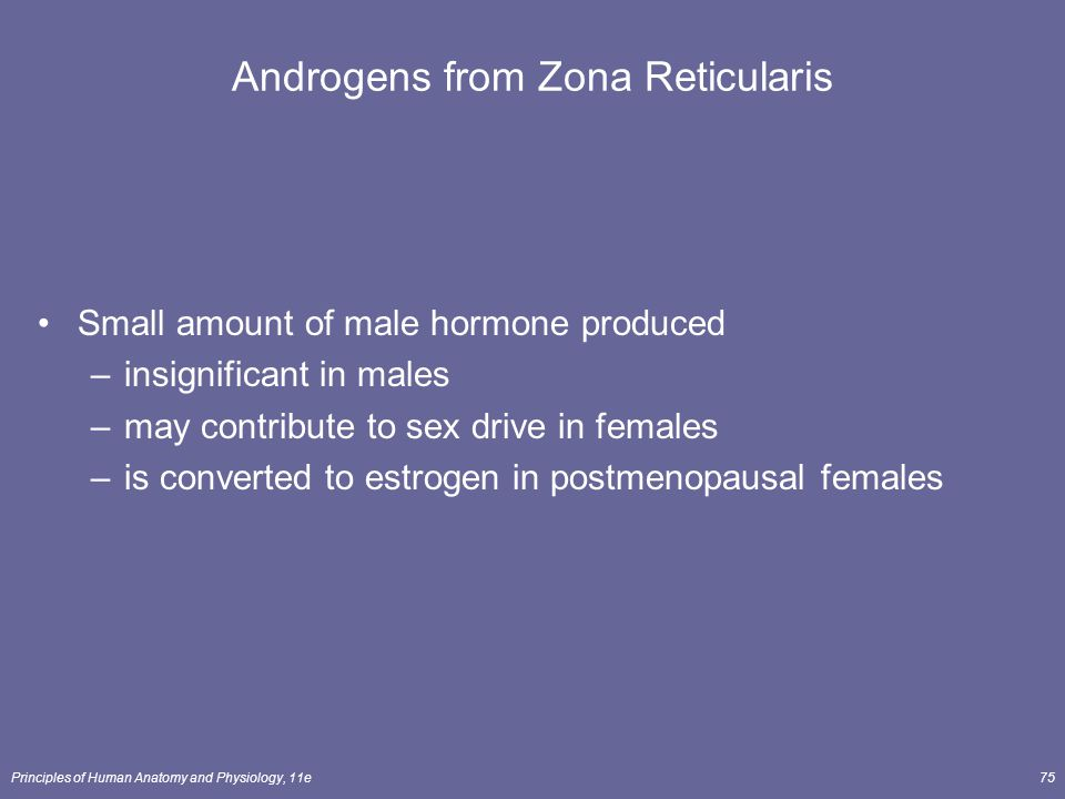 Principles of Human Anatomy and Physiology, 11e75 Androgens from Zona Reticularis Small amount of male hormone produced –insignificant in males –may c