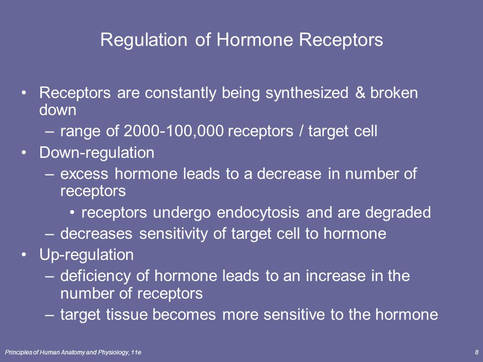 Principles of Human Anatomy and Physiology, 11e8 Regulation of Hormone Receptors Receptors are constantly being synthesized & broken down –range of 20