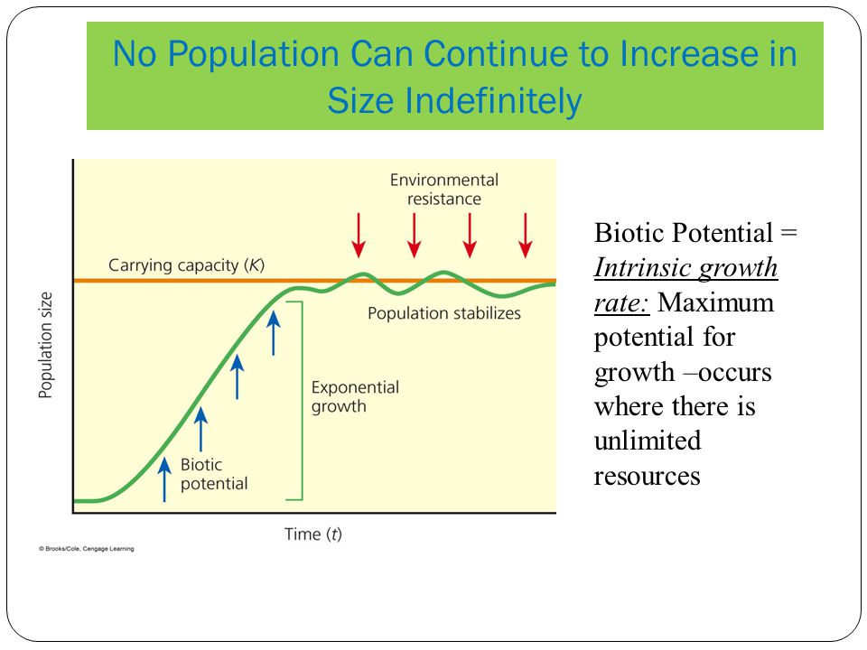 No Population Can Continue to Increase in Size Indefinitely Biotic Potential = Intrinsic growth rate: Maximum potential for growth –occurs where there