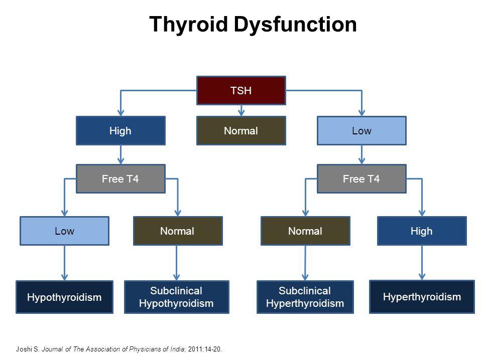 Thyroid Dysfunction TSH HighNormal Low Free T4 LowNormal Hypothyroidism Subclinical Hypothyroidism Normal Free T4 High Subclinical Hyperthyroidism Hyperthyroidism Joshi S.
