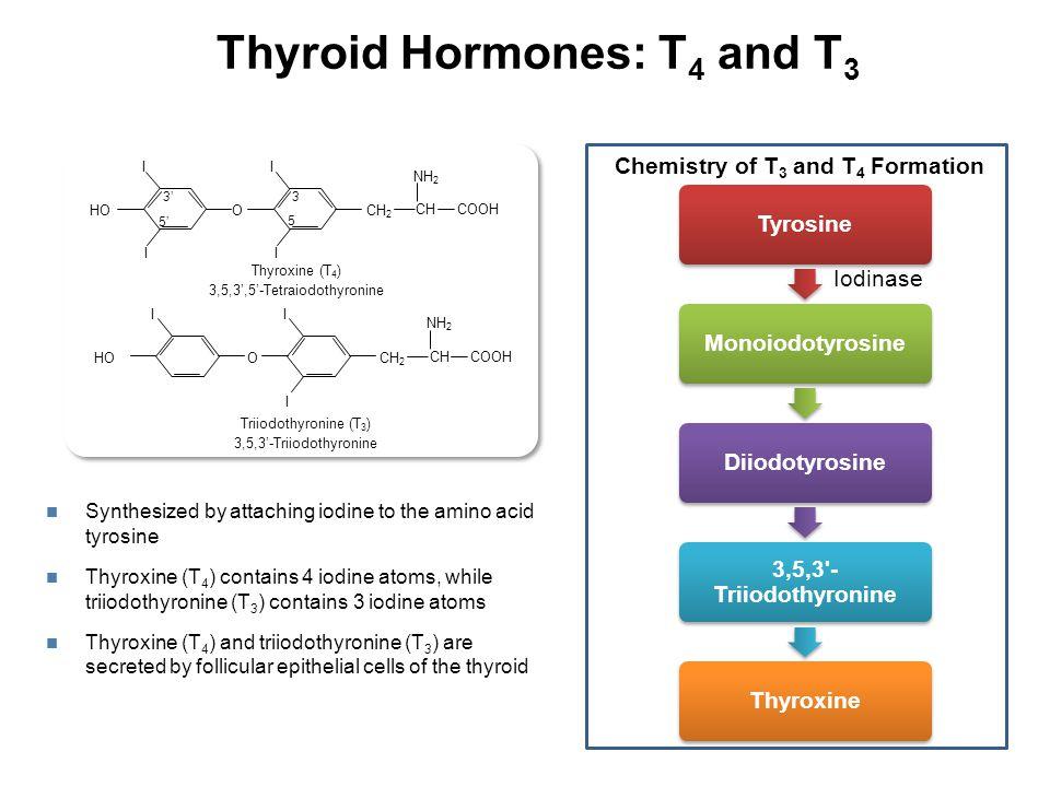 ↓ TSH, Normal FT4 Subclinical Thyrotoxicosis T 3 toxicosis