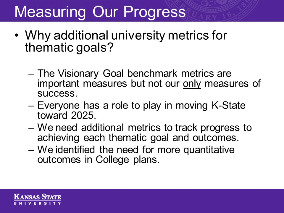 Why additional university metrics for thematic goals.