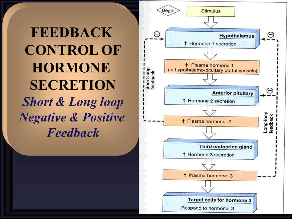 FEEDBACK CONTROL OF HORMONE SECRETION Short & Long loop Negative & Positive Feedback