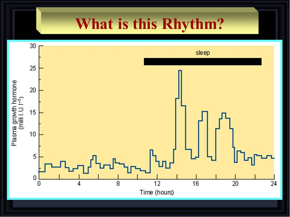 What is this Rhythm?